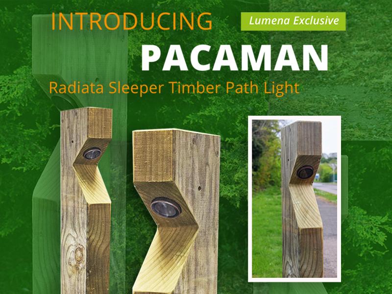 Wooden Path Lights Blog